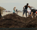 Rockaway Beach Dune Creation Project